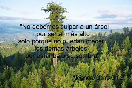 Frases De Alejandro Garro Ortiz